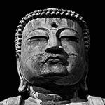 Budha Has